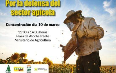¡Concentración por la defensa apícola!