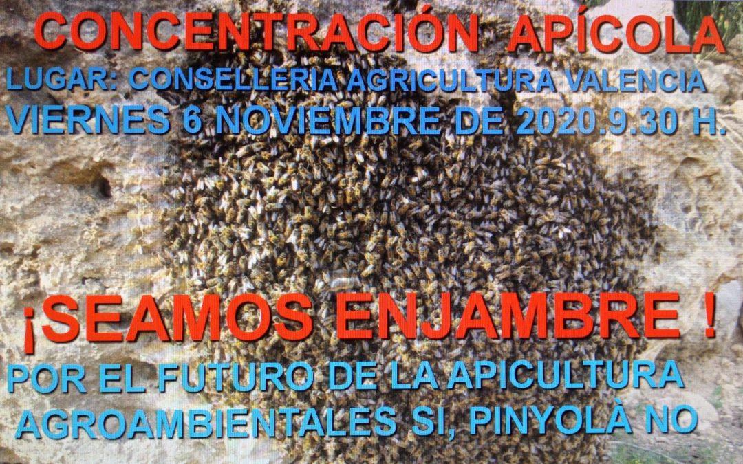 MANIFIESTO SOBRE EL ACTO DE PROTESTA 6 -11-20
