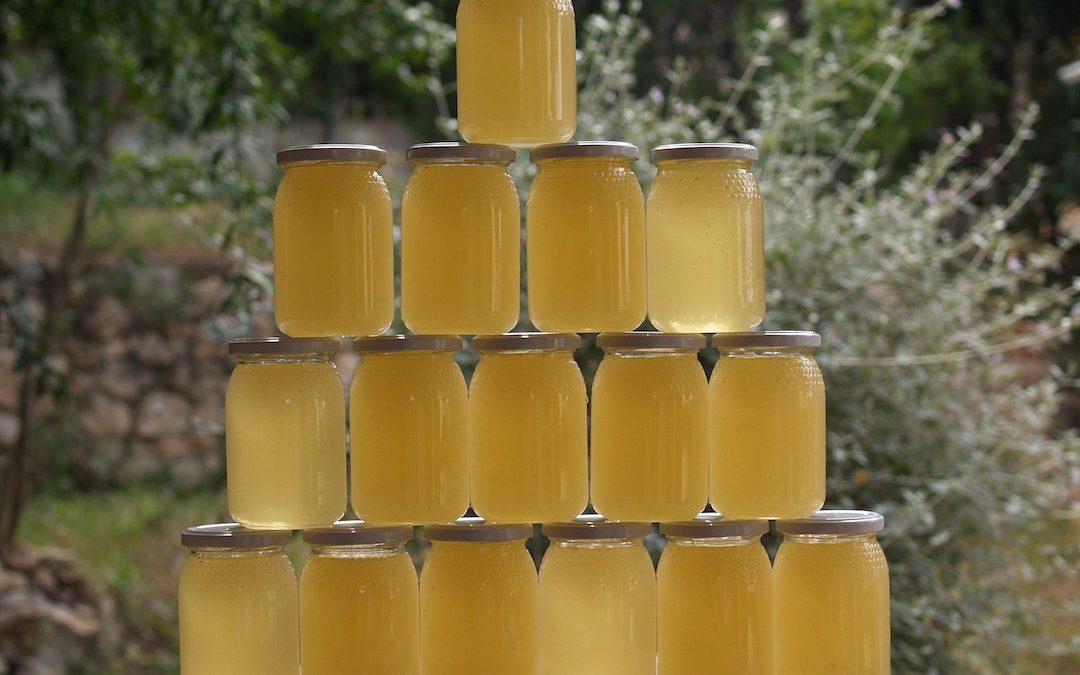 Convenio APIADS para análisis de la calidad de la miel, junio 2021